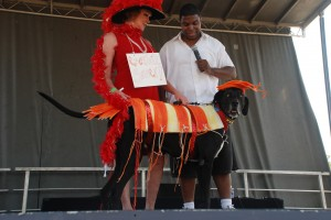 Samson, winner of first place in the big dog category... He was a shrimp