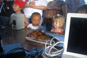 Kids checking out a live lobster